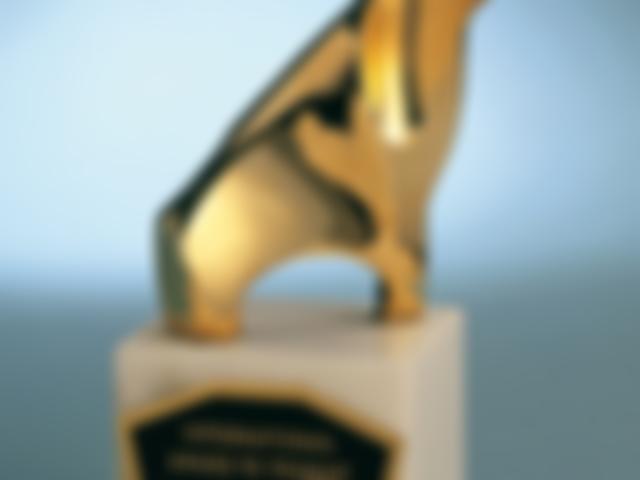 Prêmio Internacional de Turismo, Hotelaria e Gastronomia