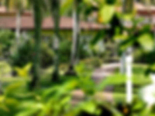 Giardino Hotel Village Paraiso Tropical Morro de Sao Paulo