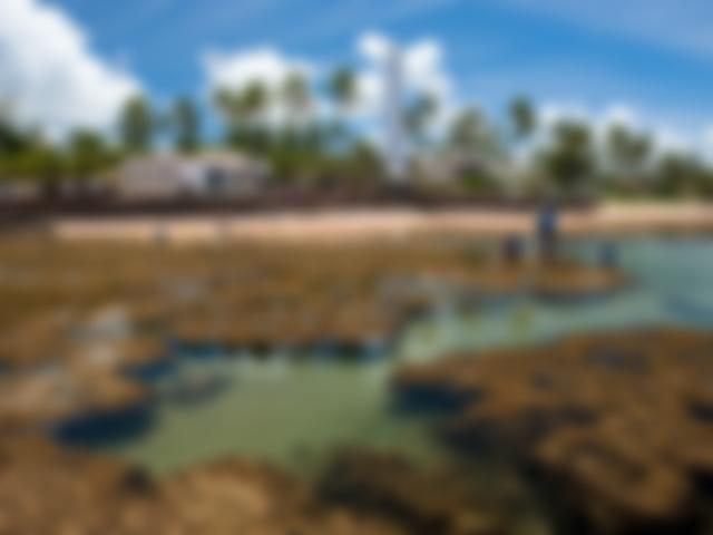 Praia do Forte, Bahia | Imagem: Enrico Marcovaldi