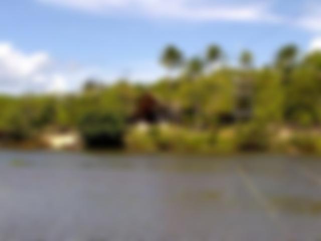 Banho de Rio Reserva da Sapiranga - Praia do Forte, Bahia