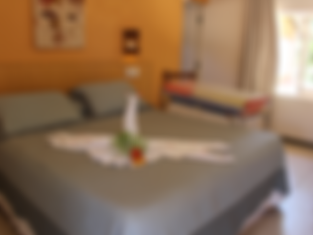 Duplo Deluxe - Apartamento 12 - Pousada Tatuapara BA