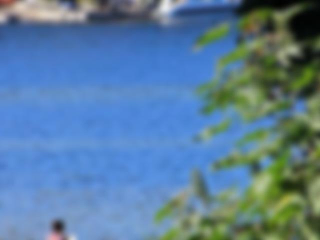 Vista da lagoa Pousada Casa da Lagoa - Florianópolis