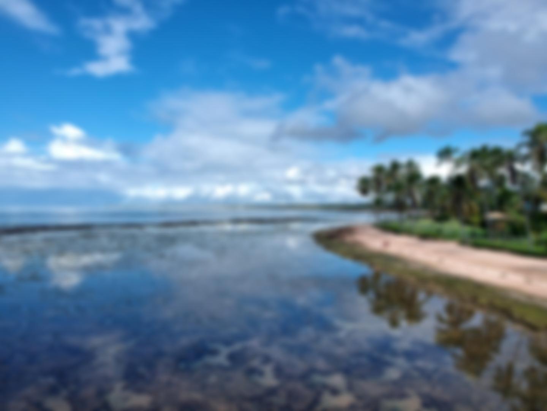 Praia do Forte, vocação para o ecoturismo