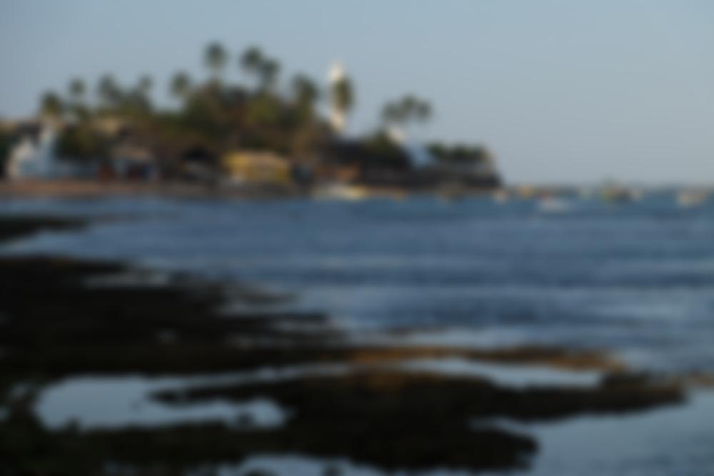 Praia do Forte: perfeito para romance