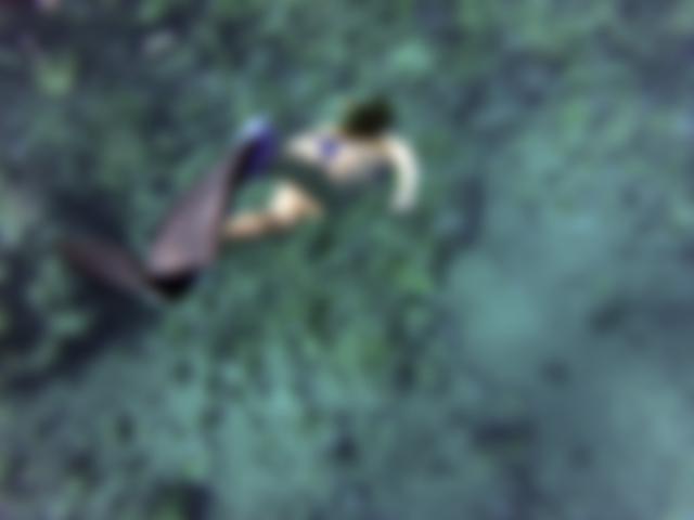 Mergulho livre para iniciantes