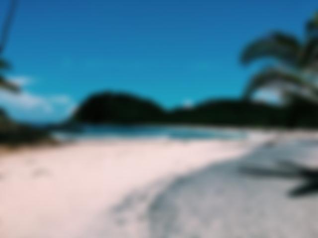 Mar azul, areia branca e coqueirais