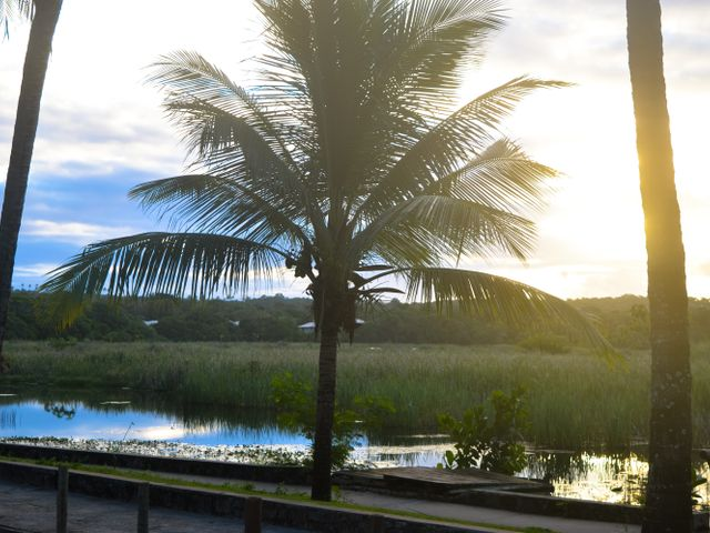 Lagoa Timeantube na Praia do Forte | Imagem: Cacio Santana