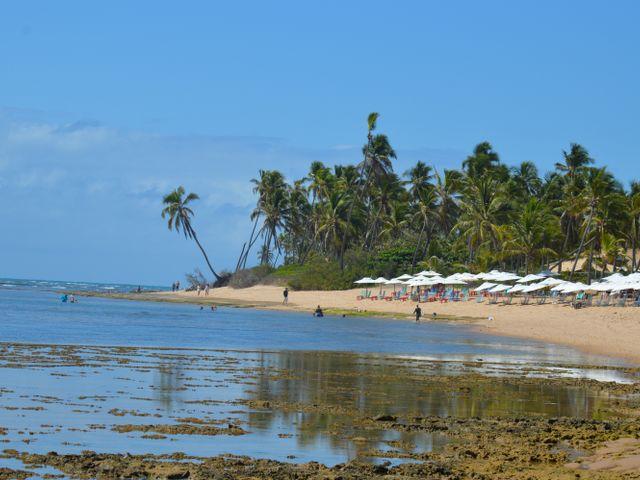 Praia do Lord na Praia do Forte | Imagem: Cacio Santana