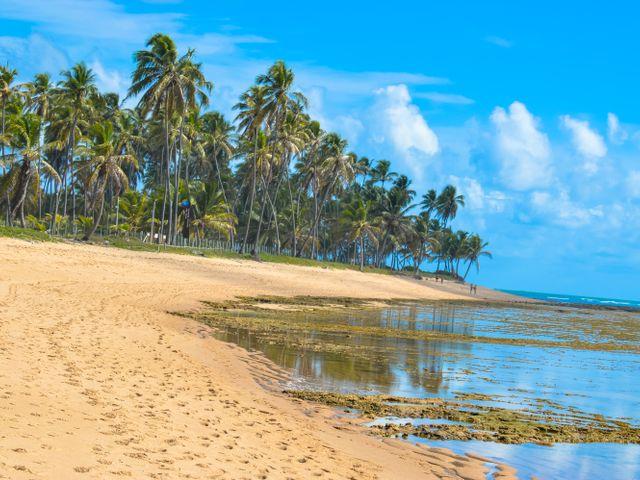 Praia do Forte - BA | Imagem: Cacio Santana